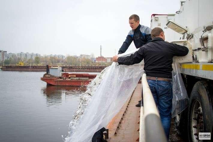 В Волгу и Каспий за 2015 год выпущено 31,6 миллиона мальков осетра