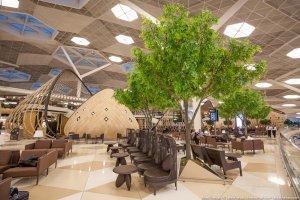 Самый красивый аэропорт в мире. Баку. Азербайджан