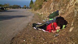 Польша: сирийских беженцев можно отправить «освобождать» страну