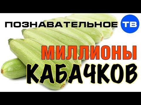 Пояснение Евгения Фёдорова о русских овощах