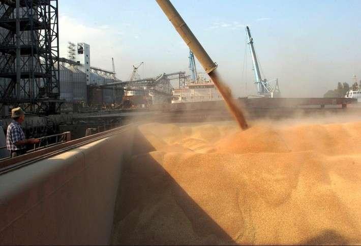 Среди новых покупателей российского зерна — Бразилия, Австралия и Сингапур