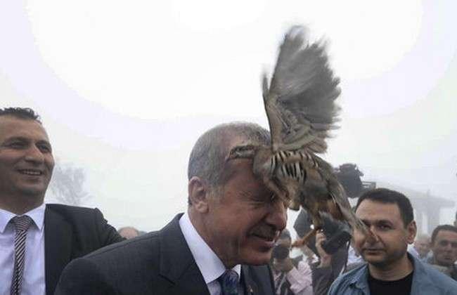 Обама руками Путина готовит Эрдогана к большому пинку под зад