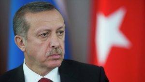Политики и журналисты Турции о Су-24: ошибся Эрдоган, а платить - нам
