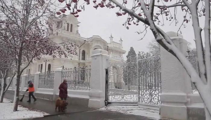 Усадьбу Асеевского парка выставили на продажу на интернет-барахолке Тамбова