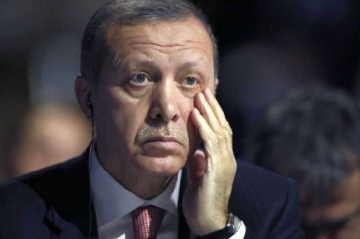 Эрдоган, пиши заявление, мы нашли документы!