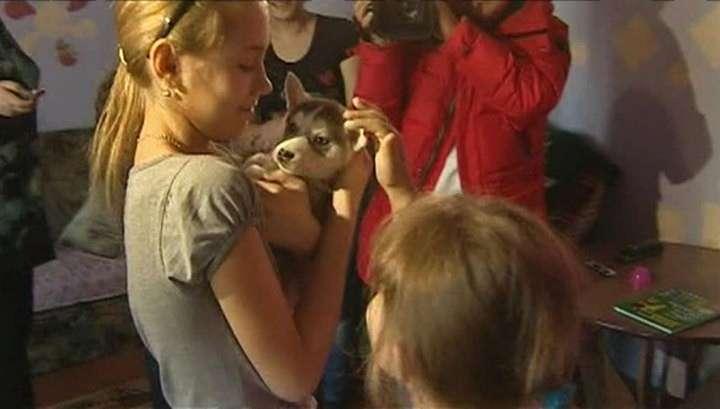 Владимир Путин подарил хакасской школьнице щенка хаски