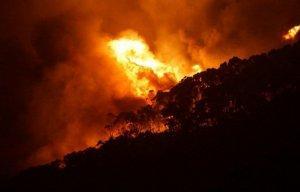 Количество сгоревших домов на юге Австралии превысило 100