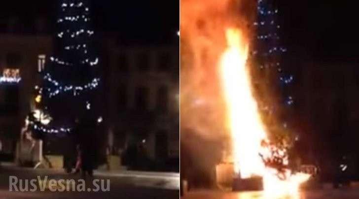 В Брюсселе с криками Аллах Акбар сожгли рождественскую ёлку