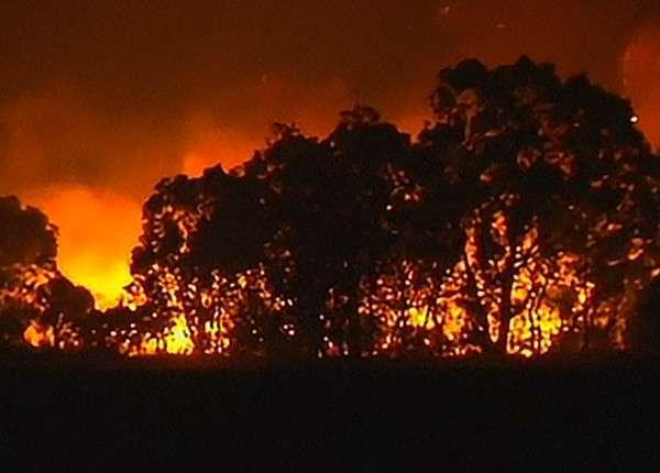 Мощный лесной пожар уничтожил около сотни жилых домов в Австралии