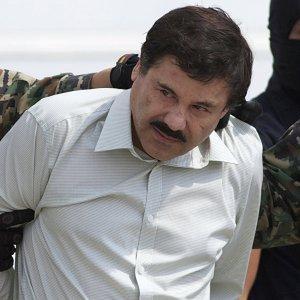 Президент Мексики заявил о задержании наркобарона Коротышки Гусмана