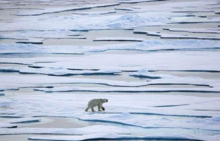 Люди жили в Арктике уже 45 тыс. лет назад
