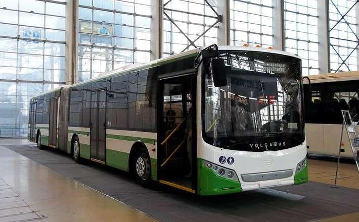 Калининград и Волгоград приобрели 172 новых автобуса VOLGABUS