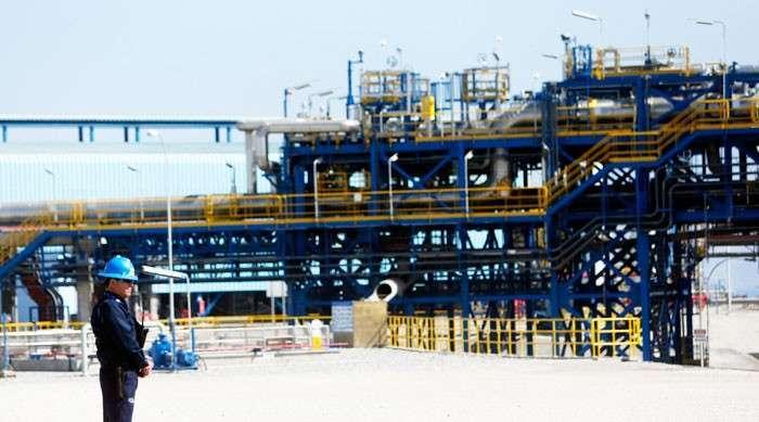 Американские «ослы» дадут Украине газу. Сенаторы США из Демократической партии обещают снизить энергозависимость «незалежной»