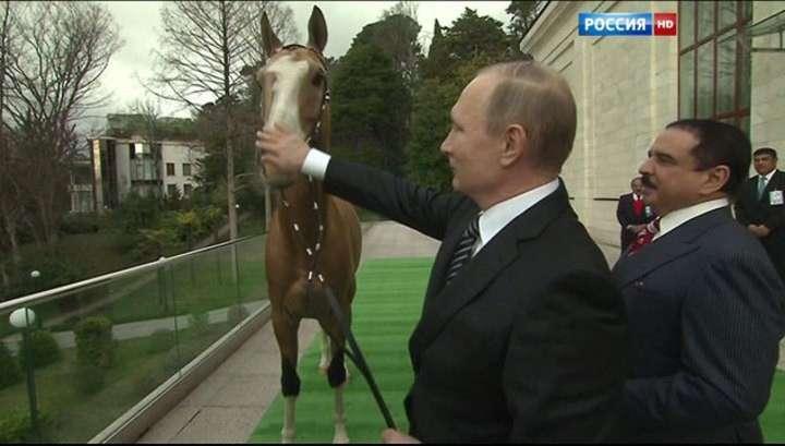 владимир путин подарил королю бахрейна коня.мурзилки int.-про конь любэ