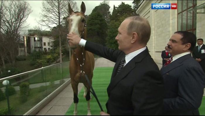 Владимир Путин подарил королю Бахрейна скакуна и получил от него острый клинок