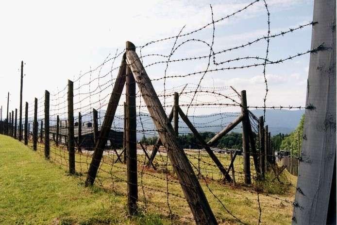 Поляки строят стену на границе с Украиной