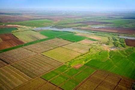 Гривну валят ради дешёвой приватизации: постмайданные власти хапают землю и заводы