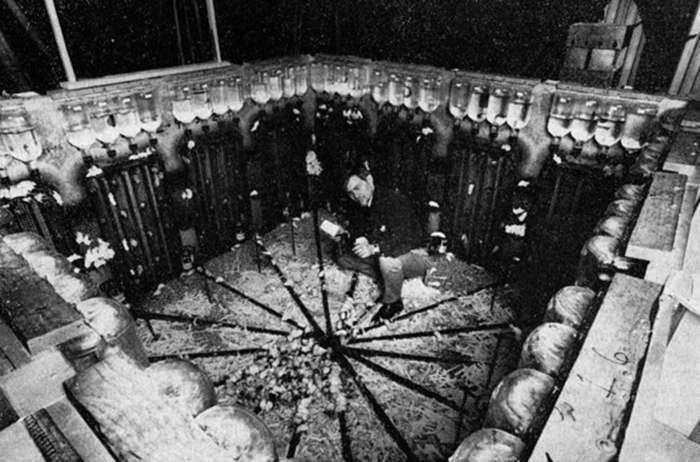 Эксперимент «Вселенная-25» был объяснён неправильно