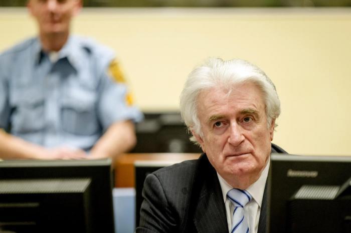Юридический консультант Караджича: Приговор трибунала основан на предположениях