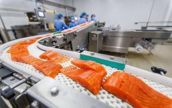 Норвежский лосось — самая токсичная еда во всём мире