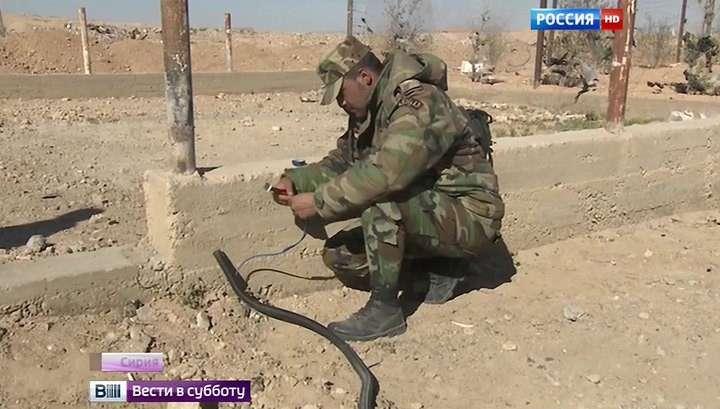 Евгений Поддубный: такого количества мин, как в Пальмире, я не видел нигде