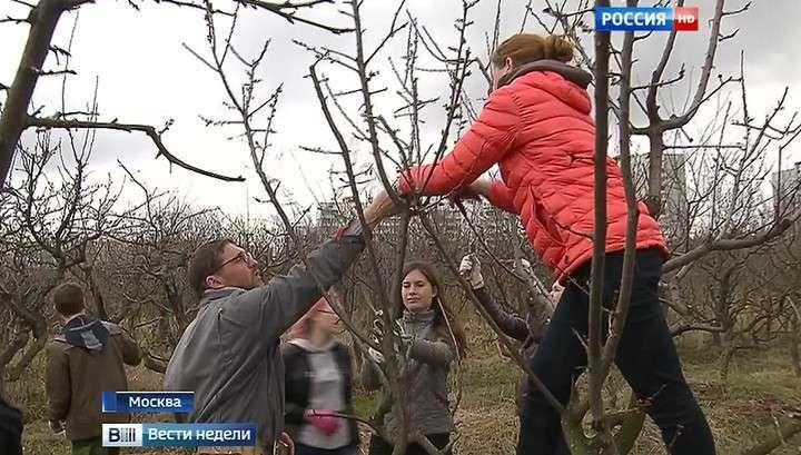 Владимир Путин помог ученым Тимирязевки отбиться от нахальных застройщиков