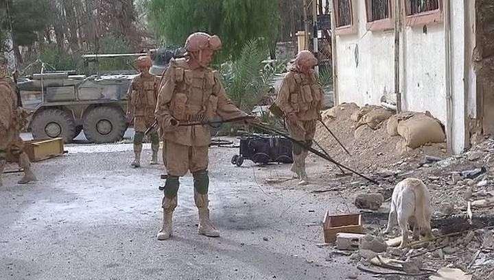 Пальмира без мин: российские сапёры очистили дорогу реставраторам