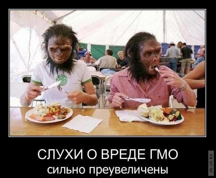 Пальмовое масло пусть жрут те, кто его завозит в Россию!