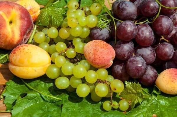 Узбекистан заявил о готовности заменить РФ турецкие овощи и фрукты