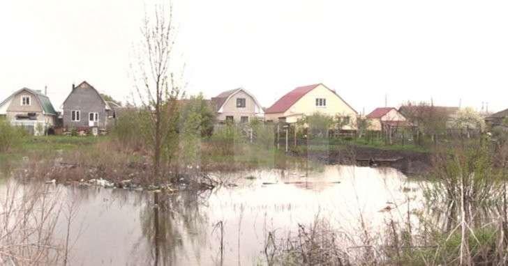 Жители посёлка под Воронежем тонут в канализационных водах из-за самодельной плотины