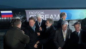 Новак заявляет о давлении со стороны ЕК на участников «Южного потока»