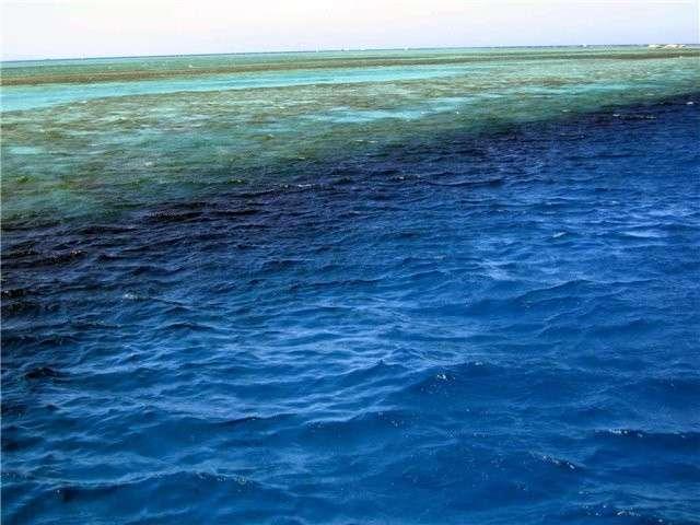 Что мы на самом деле знаем о воде