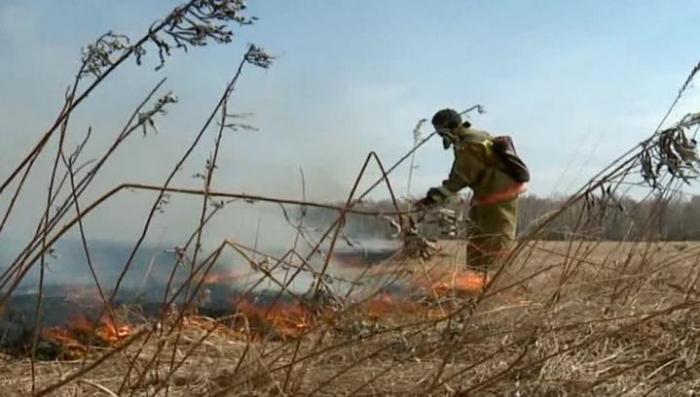 Огонь в Приамурье перекинулся с сухой травы на жилые дома