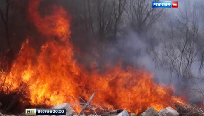 Площадь сибирских пожаров разрастается: Президент дал особые поручения