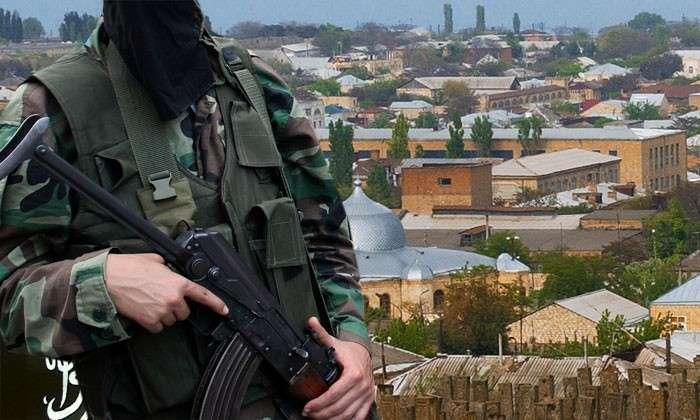 Кавказское эхо Донбасса. Используют ли Украина и Запад радикальных исламистов в борьбе против России