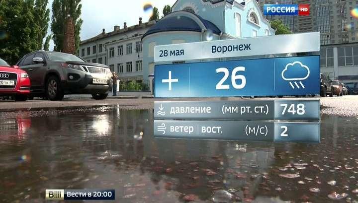 Российская погода сделала скачок навстречу лету