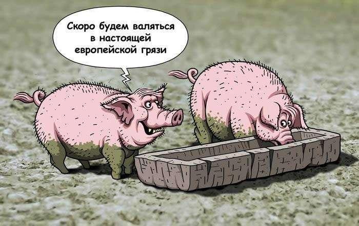 Украина: скотный двор, возомнивший себя империей