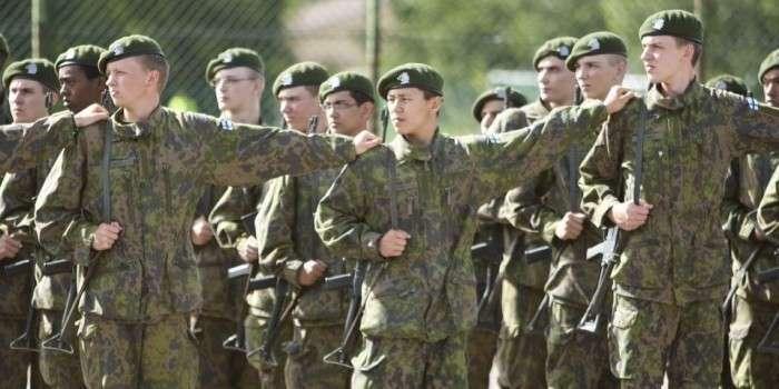 В Финляндии медведь сорвал военные учения, испугав 3000 солдат