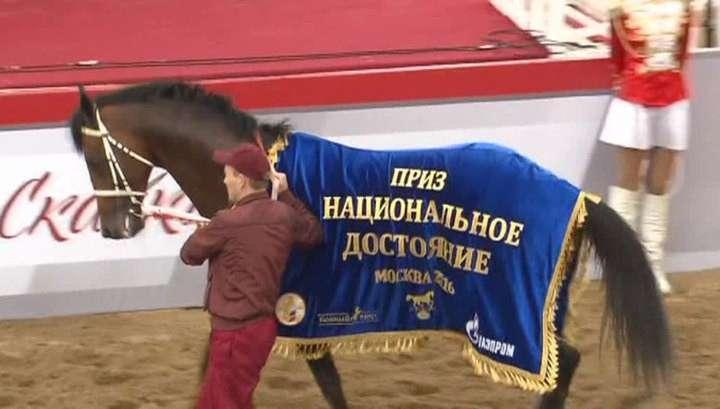 Приз Президента России выиграл жеребец Тайгер Кид