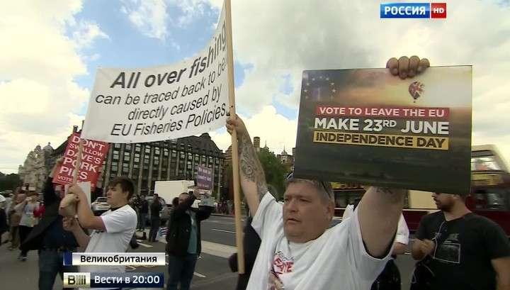 Битва за Темзу и гадания на свиньях: Британия ждёт референдум о выходе из ЕС