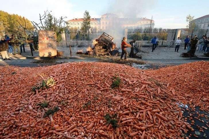 Россияне выбирают своё: за рубежом разучились делать нормальные продукты