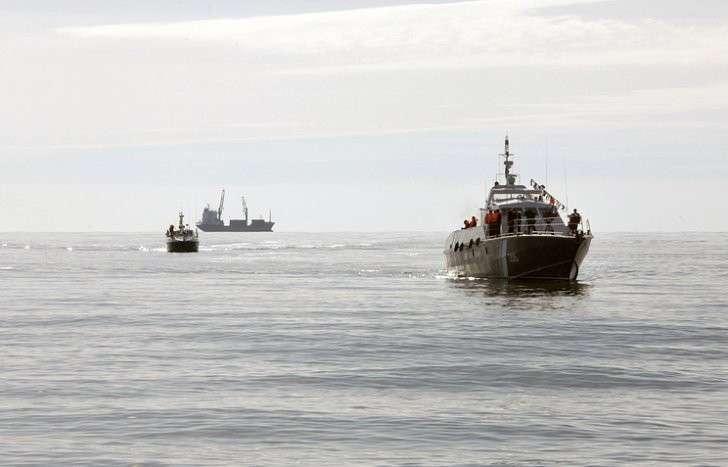 Пограничники на Камчатке задержали семь судов, ловивших рыбу «стенами смерти»