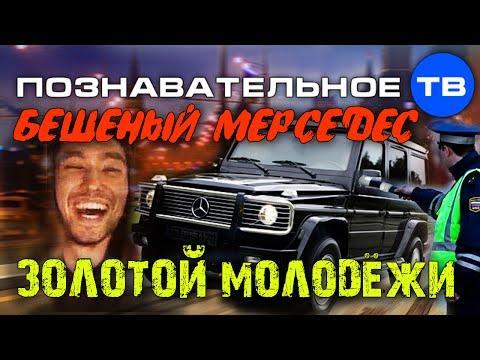 Законная власть и война бандитских кланов в России