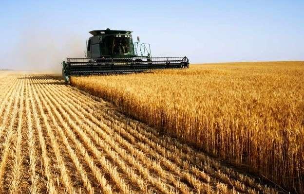 25. Сельское хозяйство РФ по-прежнему демонстрирует рост история, политика, факты