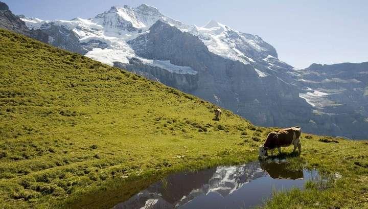 Швейцария официально отозвала заявку на вступление в ЕС