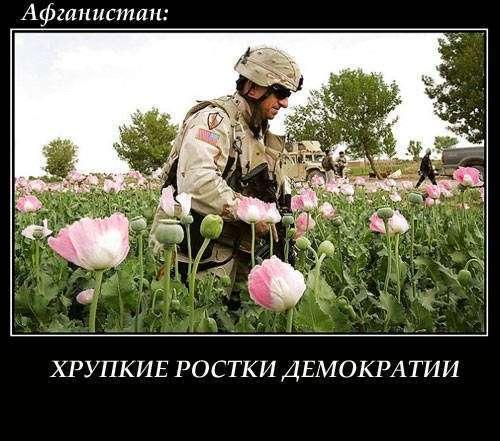 Вашингтон Пост: «Россия вредит США своей войной с наркотиками»