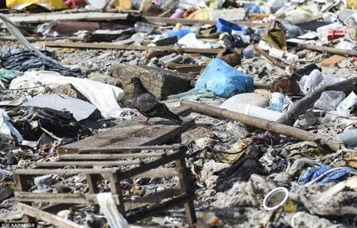 В заливе, где придется плавать спортсменам в Рио, плавают нечистоты и находят трупы
