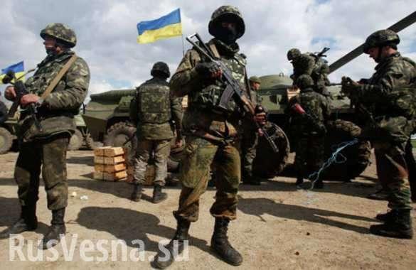 Украинские военные украли ребенка и 10 дней насиловали, пока девочка не умерла —  появляются леденящие кровь откровения «волонтеров АТО» | Русская весна