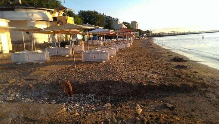 Не только пустые пляжи Крыма: фотоотчёт о поездке по Крыму