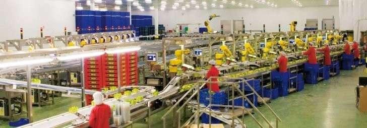 17. В России растет промышленное производство продуктов питания Сделано у нас, политика, факты